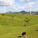 Nationals call on Federal Government to phase out renewable energy subsidies