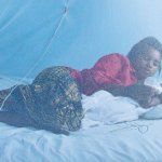 What lies ahead in quest for malaria-free Tanzania