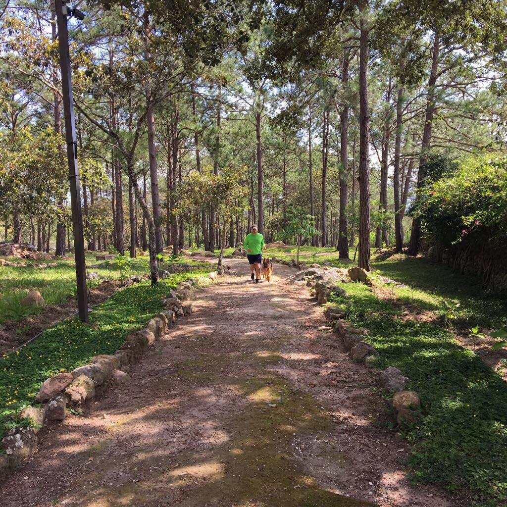 JuanOrlandoH caminata