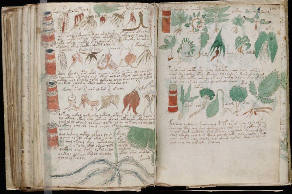 Has the Voynich Manuscript really been solved? @sarahzhang reports: https://t.co/7fW8JhBuxo https://t.co/ZTWgBSFwpx