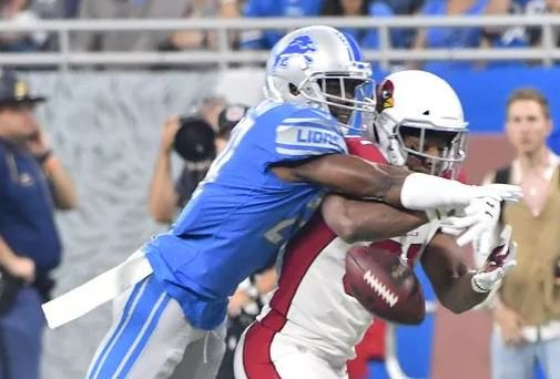 Lions nullify Cardinals' Johnson, knock him out of game