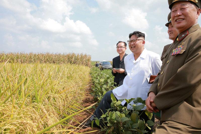Late summer rains, private food supplies limit impact of North Korea drought