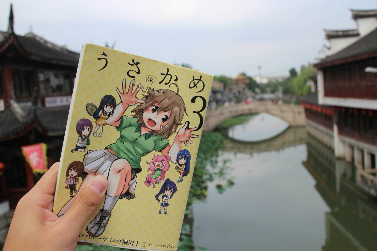 上海とうさかめ