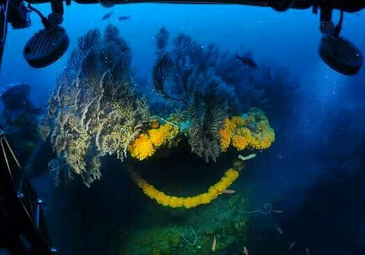 Discover the The Unknown Depths of #Curacao in the #Curasub up to 1000ft! #MondayMotivation @CuracaoTravel #fliptravel https://t.co/eoqI8GRTL4