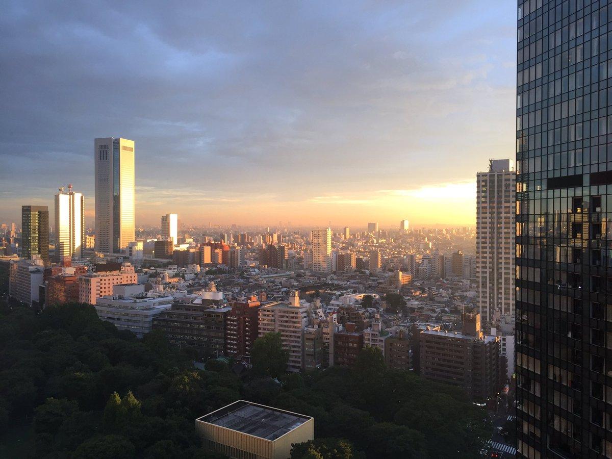 うわあ綺麗!「言の葉の庭」の中のシーンみたい。なんて綺麗 RT :  新宿です