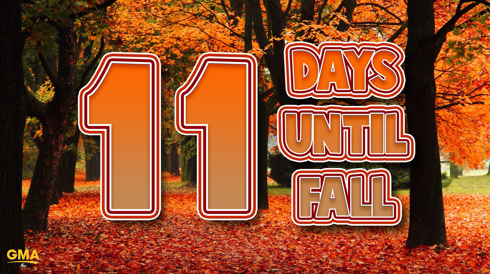 11 DAYS UNTIL FALL! �� https://t.co/aW5PnjahU1