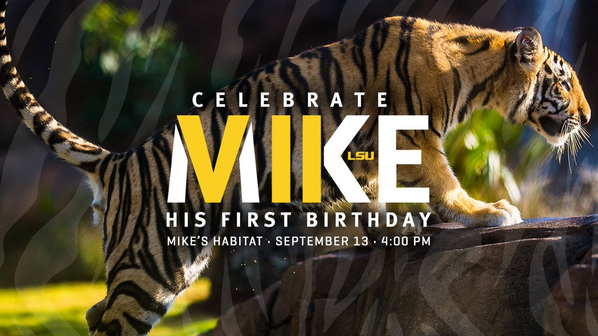 #MikeVII