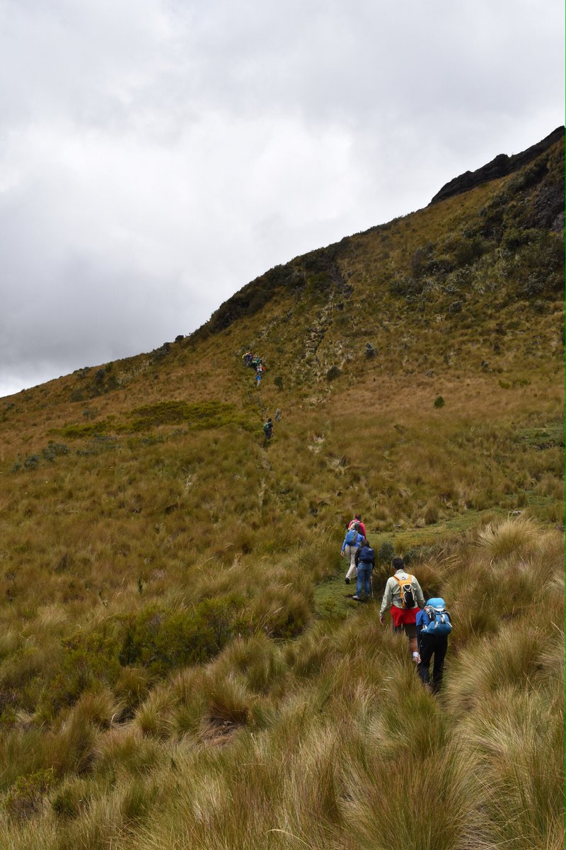 test Twitter Media - Disfrutamos mucho en nuestra primera salida Adventure Summits @TatooAdventureG al Pasochoa 4200m. No te pierdas el resto de salidas! https://t.co/grfQqMmttw