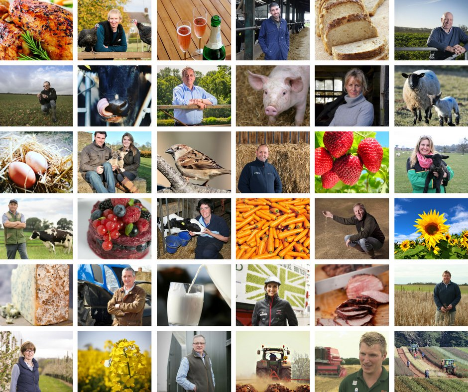 RT @NFUtweets: RT if you are supporting our world class farmers for #BackBritishFarming Day 🚜 🐄🐷🐑🐔🍓🍏🍅🌾🍰🚜 https://t.co/lj6ycPGrGj
