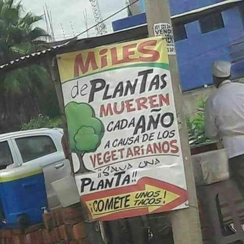RT @robinsoncholo: @BEATOFICIAL #HoySeMeOcurreQue es tiempo de salvar a las plantas #BeatMorning https://t.co/8P9jlZV0Ft