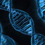 Sophia Genetics raises $30 million to help doctors diagnose using AI and genomic data