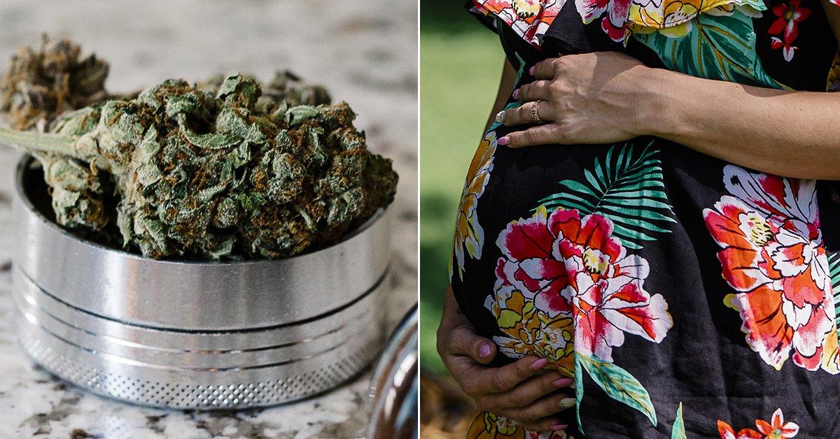 The war on drugs is now focused on moms on marijuana: https://t.co/GHaSsUoiIW https://t.co/cTZBasp75i