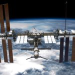 'Shape-shifting' bacteria spotted in space