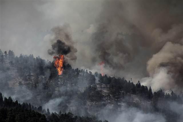 Kütahya'daki orman yangını 5 gün sonra kontrol altına alındı https://t.co/Tkq7V1DZMk https://t.co/F6IDYOhojE