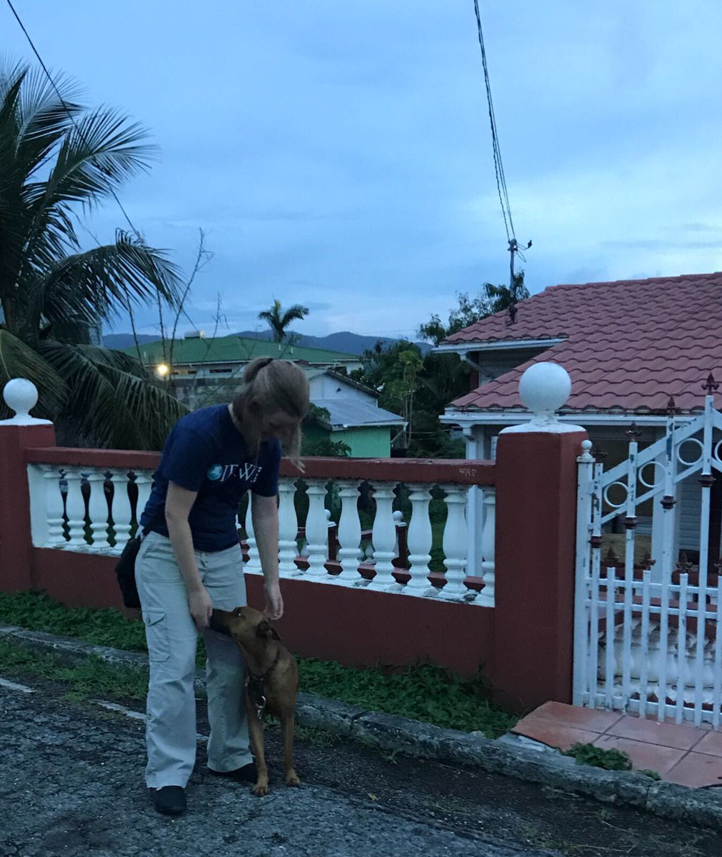 RT @action4ifaw: First day on the island - meeting the community of Antigua. https://t.co/Pc79UclqgC