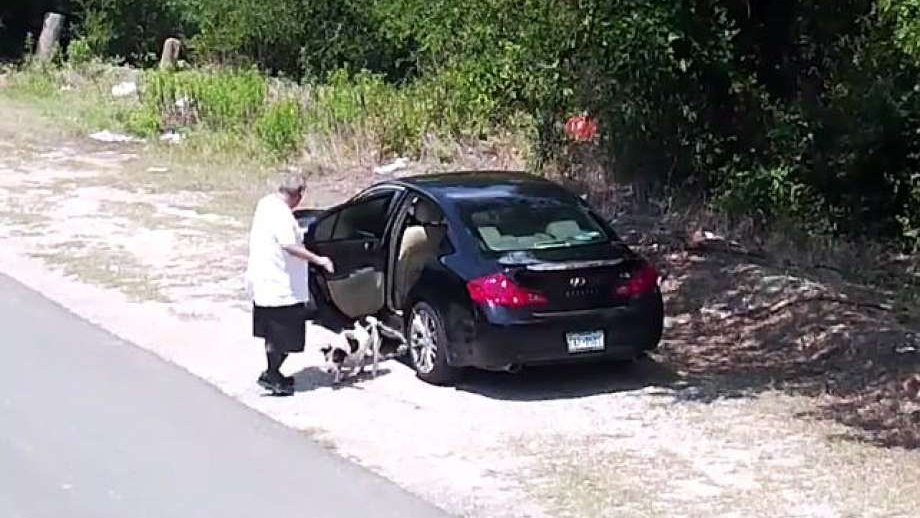 Heartbreaking video: Man caught abandoning dog on the side of the road