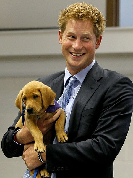 Happy Birthday Prince Harry!  Here he is with a puppy  You re welcome. J&Bx
