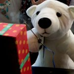 Man stole fake polar bear, penguins from Canberra Outlet Centre Christmas set-up