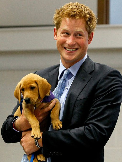 Happy Birthday Prince Harry!!
