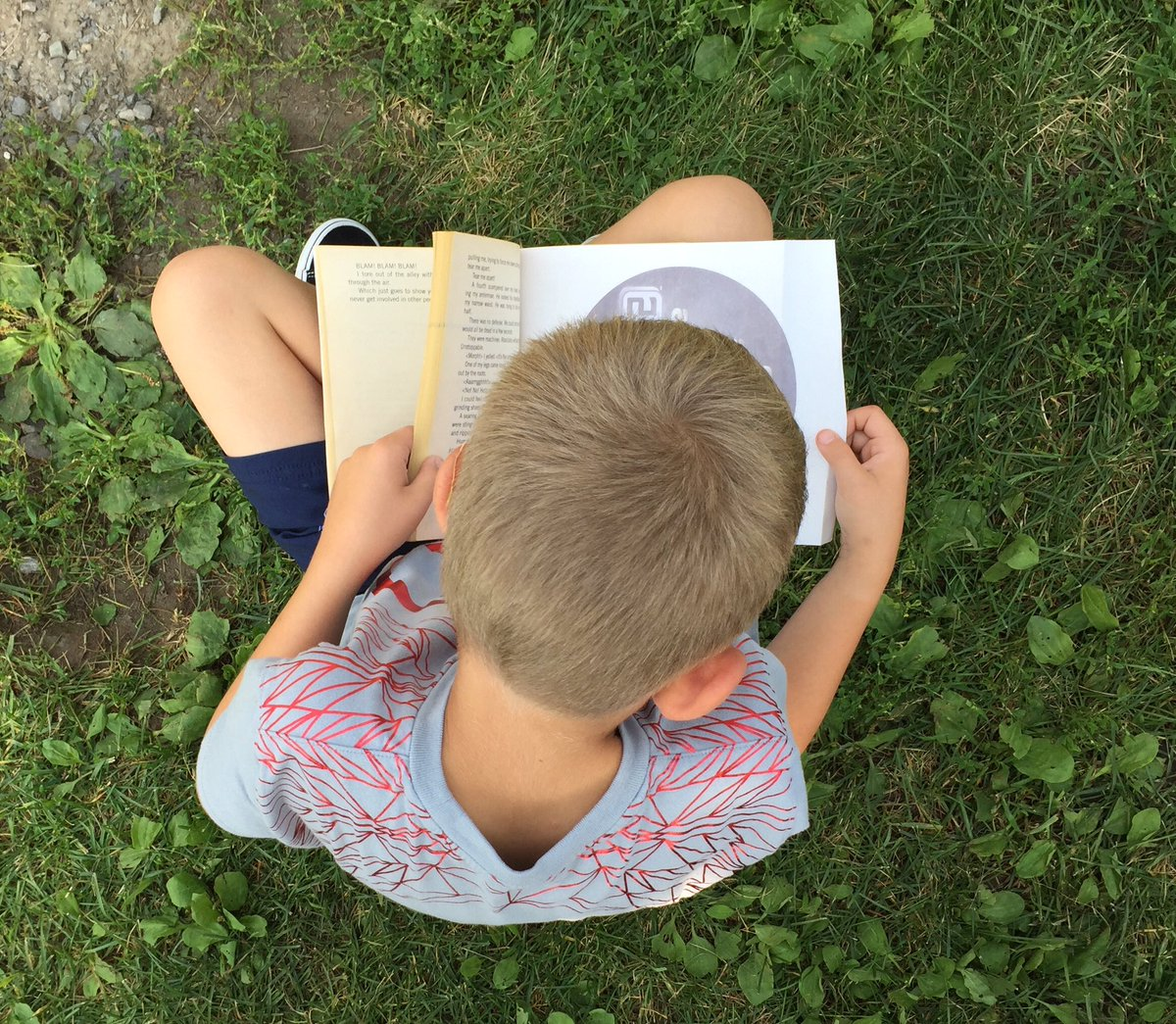 test Twitter Media - Reading outside on a perfect day!#ottawaschools #natureschool#summeratlast https://t.co/LJsKsLDjEA