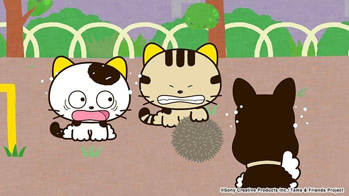 アニメ タマ&フレンズ~うちのタマ知りませんか?~ 今日のお話は「不思議なおとしもの」公園で遊んでいると、トラが見た事も