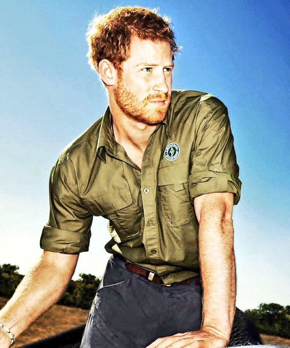 Happy Birthday to the very handsome Prince Harry! I love you babe.