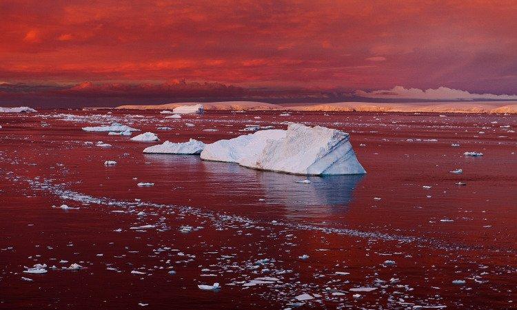 What's happening in Antarctica won't stay in Antarctica. https://t.co/mxFkfMOtJb https://t.co/xfOggC0jtG