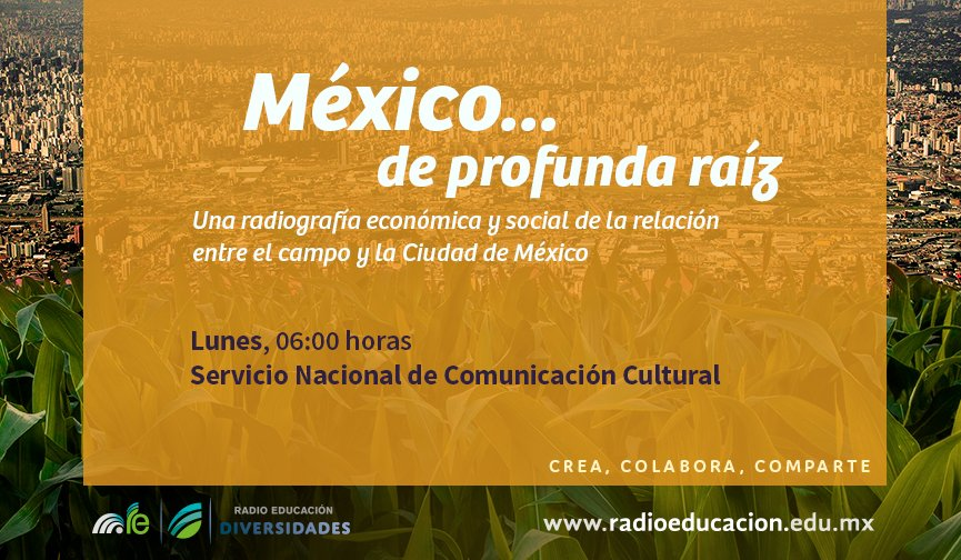 A las 6 h escucha 'México… de profunda raíz', como parte de nuestra #BarraDelAmanecer https://t.co/NHiFo81n6d https://t.co/Vt6CMwnqnW