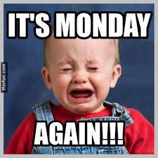 We know Monday can be rough, but @chaturbate 's got you! #livewebcams #chaturbate #mondays #memes https://t