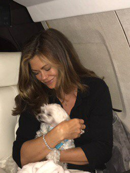"""@kathyireland: Landing in NJ on Gracie & Delilah's """"prive jette!"""" Guess which Maltese is snuggling? One is too rambunctious! hahaha https://t.co/SYGEwN86yC"""
