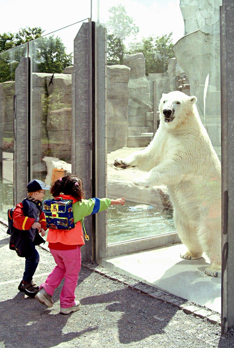 rheiner zoo eintrittspreise
