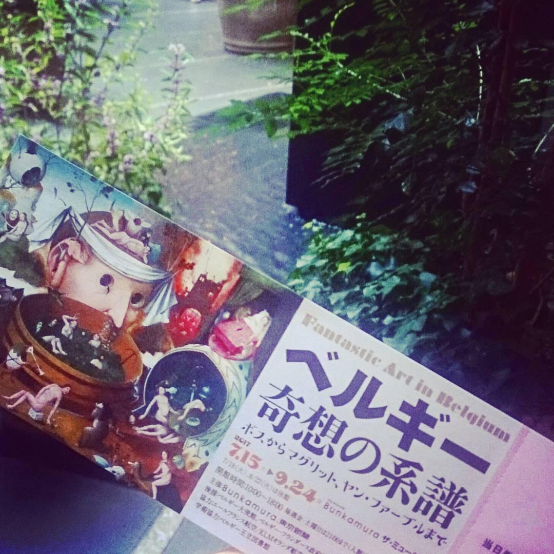 やっと行きました。上野で観た時より、近くでじっくりゆっくり観る事ができてよかったです。ボスやブリューゲル以外にはフェリシ