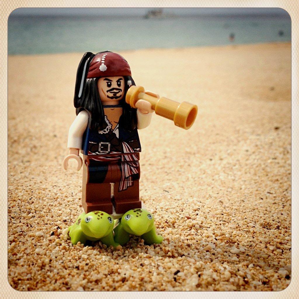 RT @LEGO_Group: Shiver me timbers! I finally got me sea legs. 🐢 #TalkLikeAPirateDay 📸https://t.co/zuYrUYk5aD https://t.co/cWnxoGZlWe