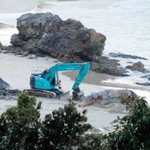 Humpback whale carcass buried on Nobbys Beach in Port Macquarie stirs community debate