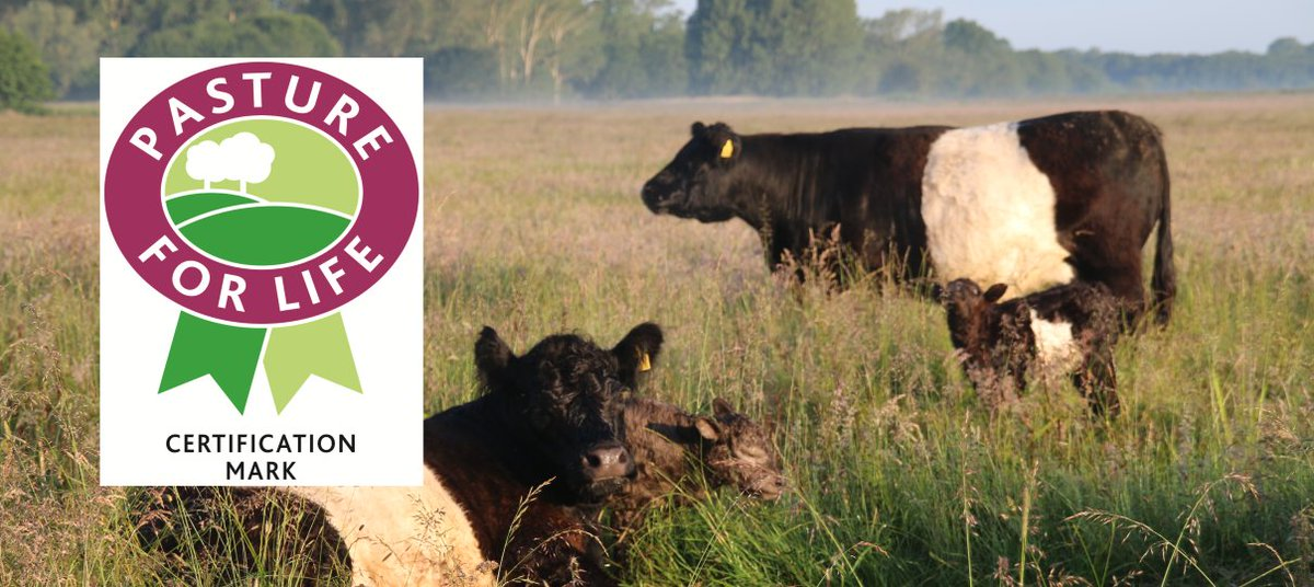 test Twitter Media - We are pleased to have joined the @PastureForLife movement https://t.co/oHahkz7VZn in #Norfolk #pflacertified #beltie #beef https://t.co/wXohBTaycW