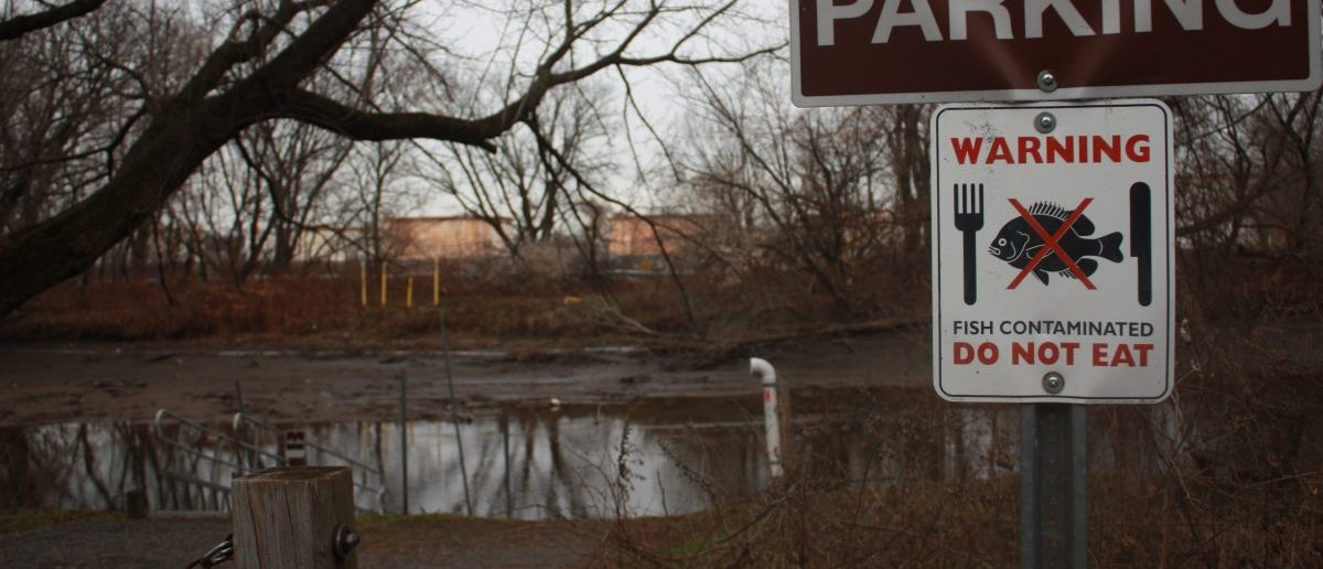 EPA Refuses To Send Staff Needed To Clean Most Toxic Waste Sites https://t.co/MEkXXnOa9U https://t.co/erQH9oZ0Kz