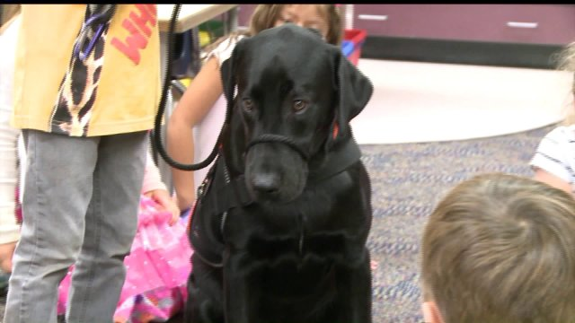 Students' Best Friend: Cedar Falls Kindergartners Helping Train Service Dog