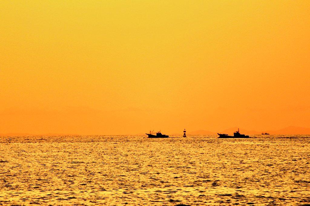 『ゴールデンタイム②』やっぱ船が好きだな( *´艸`)💕海は男の仕事場さぁ~♪おそらく1枚目はまき網漁船の船団!2枚目の