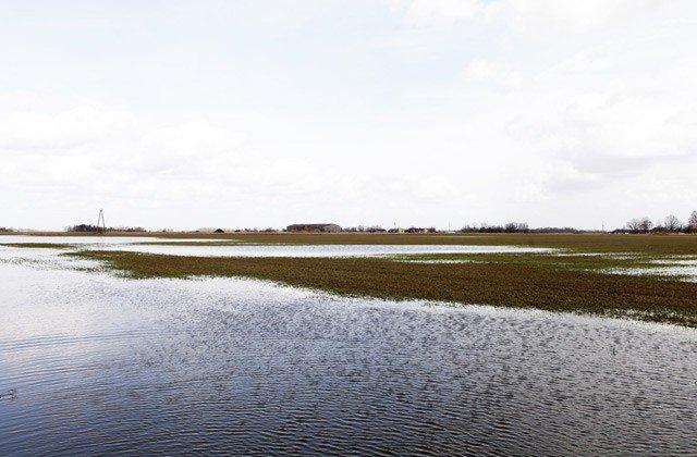 Plūdos zaudētās ražas platības ir vairāk nekā 27 000 hektāru