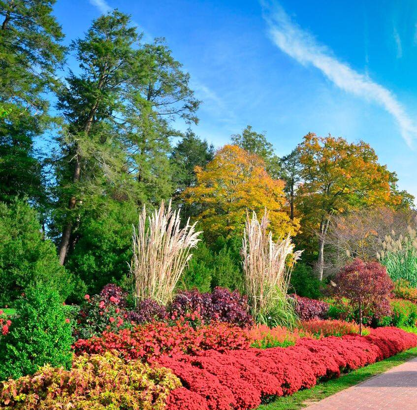 test Twitter Media - Summer turns to Fall and the world changes! #Longwoodgardens #visitphiladelphia #autumn https://t.co/pHmKU6xWJn