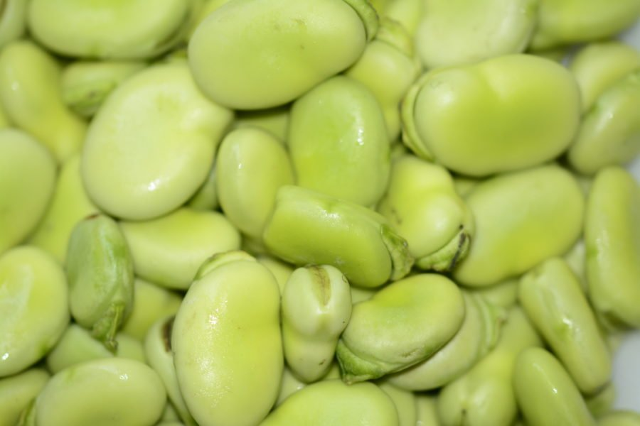 Recipe for Greek Style Fava Bean Salad https://t.co/dT5BY6xeX5 https://t.co/7lSL9gGuIF