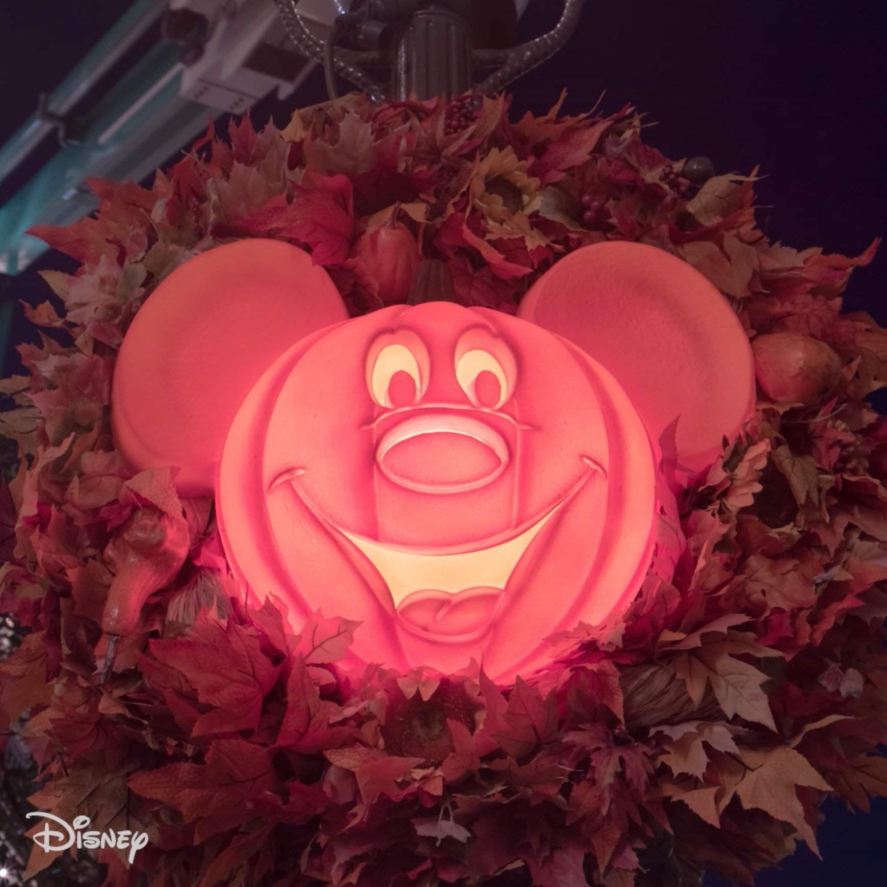 Disney: This is Halloween, this is Halloween at WaltDisneyWorld! Learn more here: https://t.co/0quUl63Yhs https://t.co/TGfnidIRk5