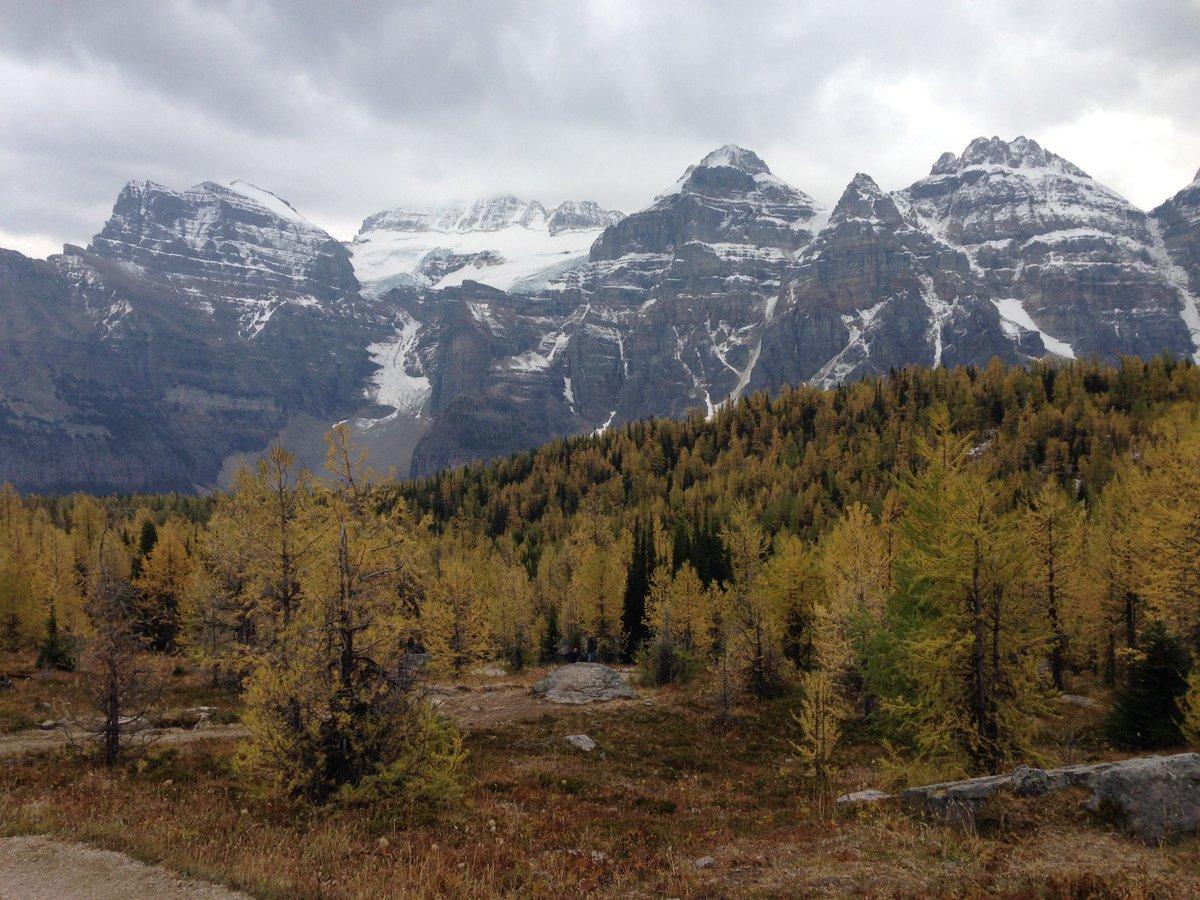 #Rockies