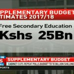 Cabinet cuts repeat polls budget to 10 billion shillings