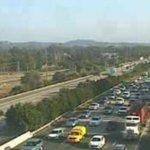 Heavy delays on the M1 after pedestrian dies in crash
