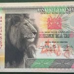 Central Bank Disowns New Currency Circulating on Social Media