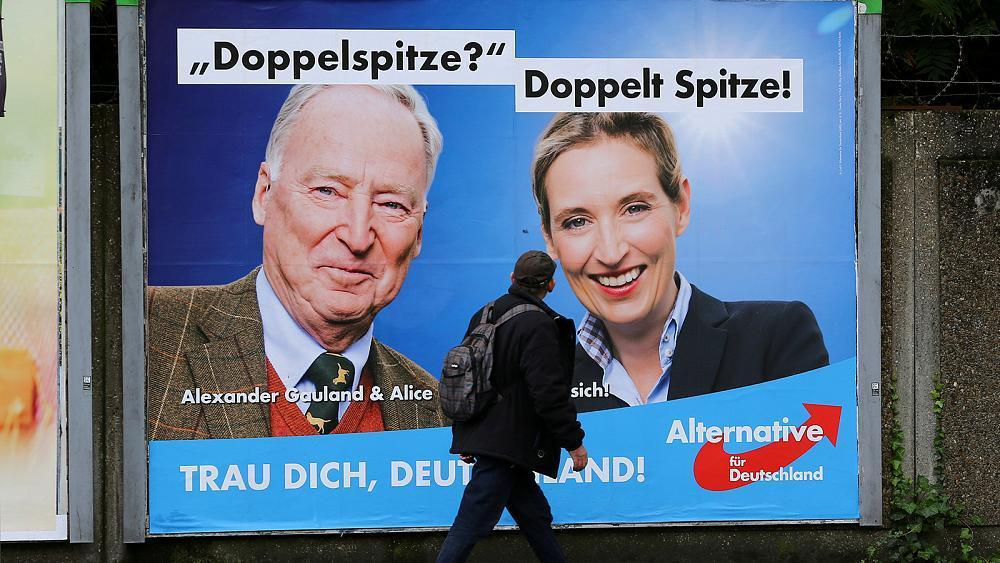 The AfD: the rise to power of Germany's far-right