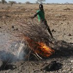 The relationship between drought and famine: Lessons from Horn of Africa