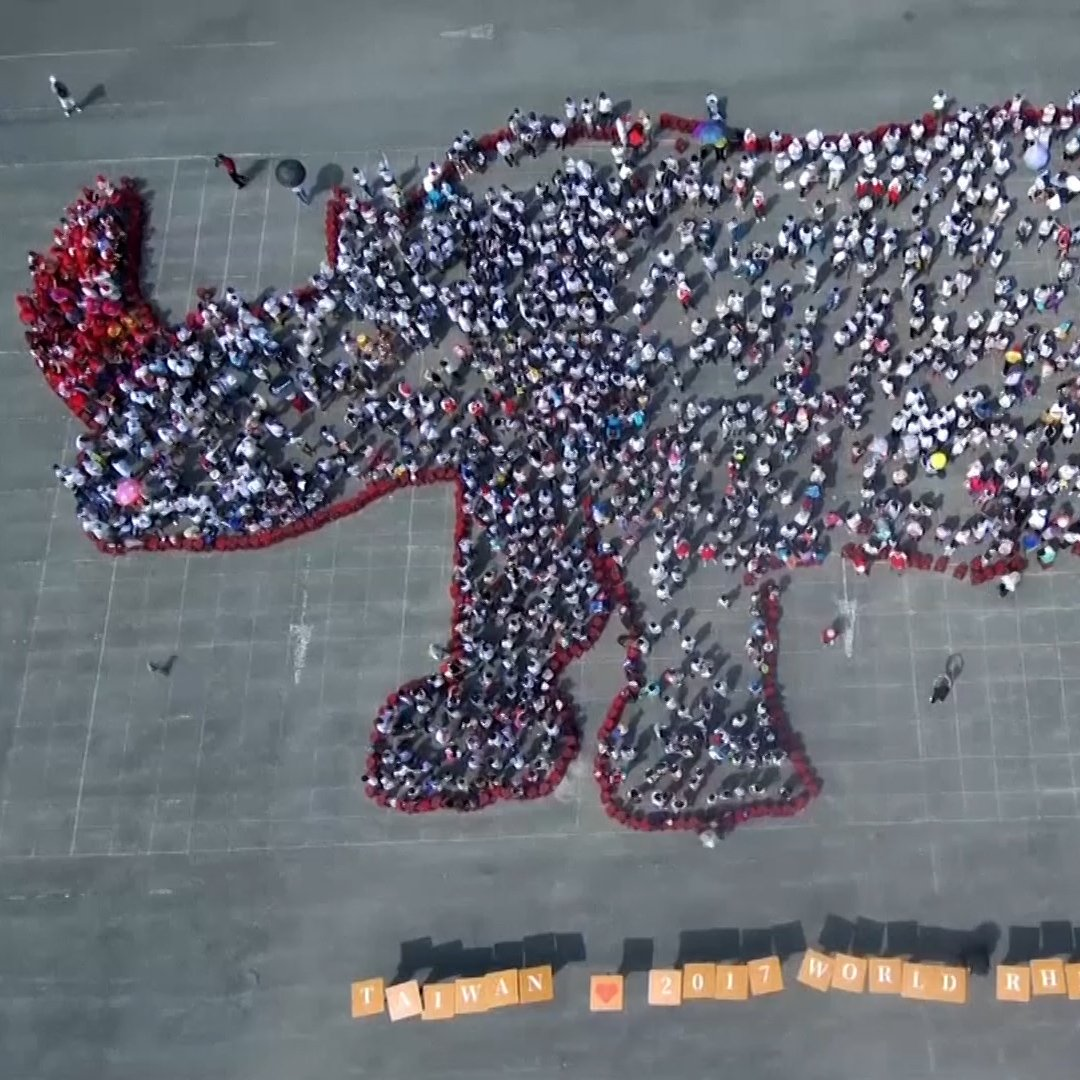 Hundreds gathered in northern Taiwan to form a rhino-shaped crowd on World Rhino Day https://t.co/DYWXh3SbHW