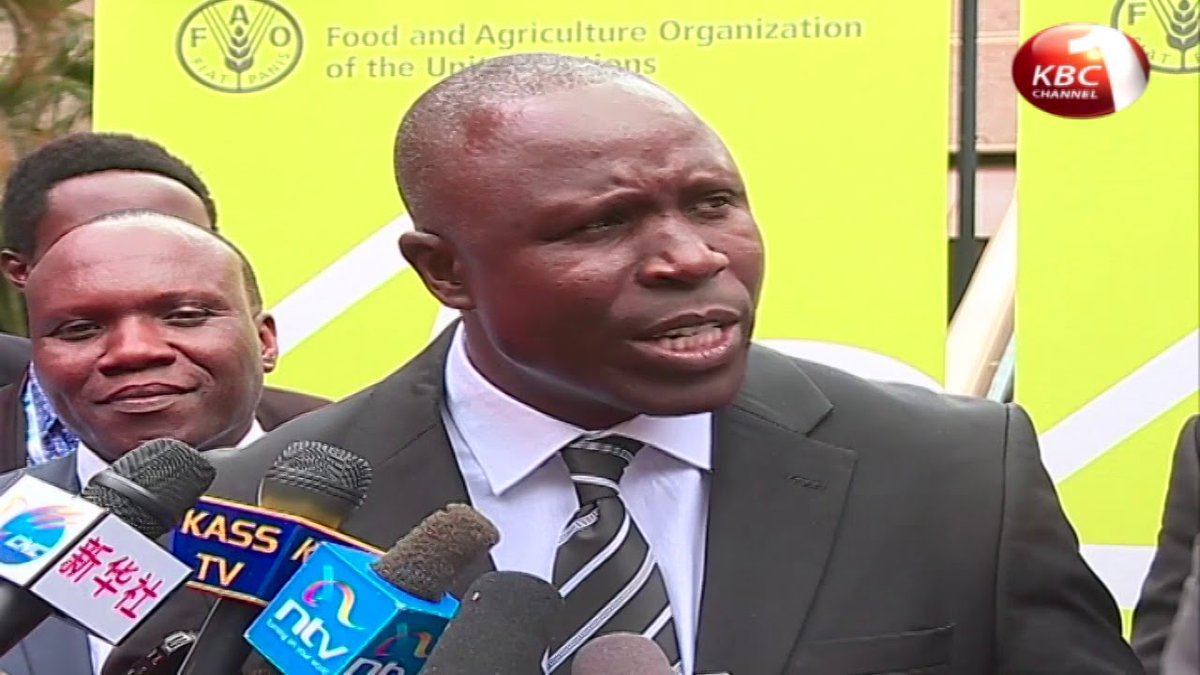 Government plans to buy all maize from local farmers